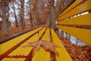 پاییز نجف آباد پاییز در بوستان زندگی نجف آباد + تصاویر پاییز در بوستان زندگی نجف آباد + تصاویر 1575798398 U6vB9 300x200