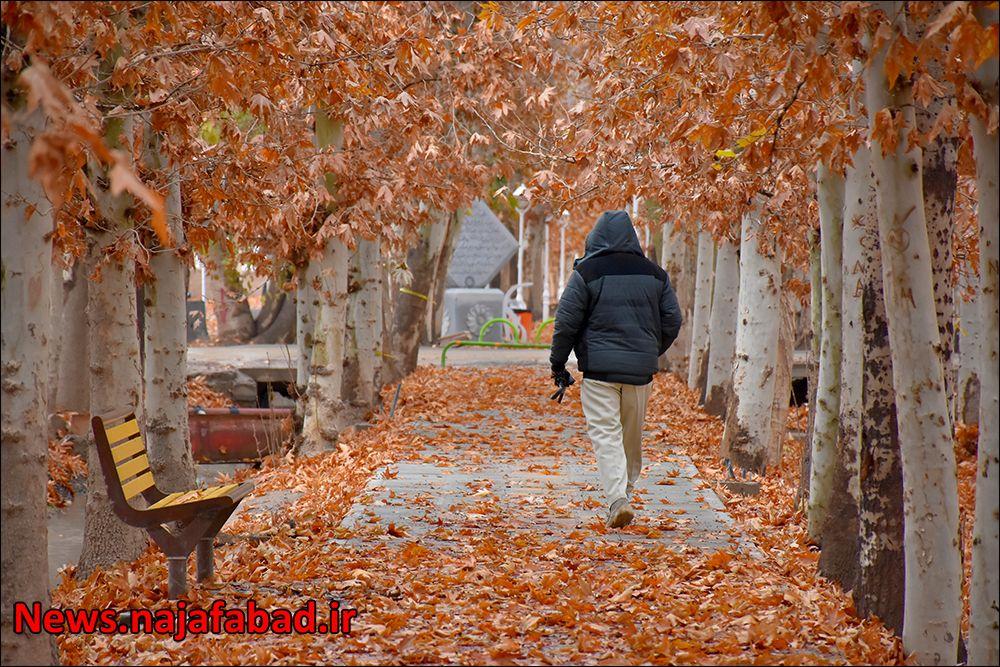 پاییز در بوستان زندگی نجف آباد + تصاویر پاییز در بوستان زندگی نجف آباد + تصاویر پاییز در بوستان زندگی نجف آباد + تصاویر 1575798403 A4aO5