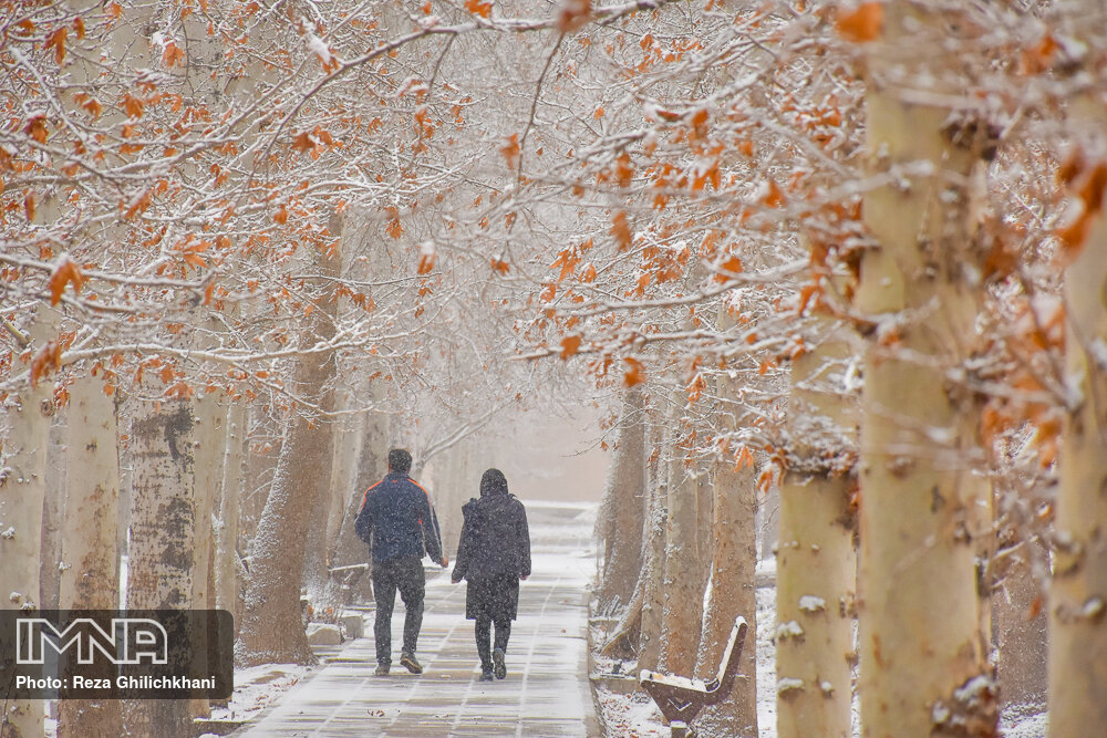 بارش برف در نجف آباد برف نوبرانه در نجف آباد+تصاویر برف نوبرانه در نجف آباد+تصاویر                                      14