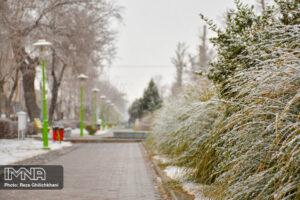 بارش برف در نجف آباد کاهش بارندگی ها در نجف آباد + تصاویر بارش برف کاهش بارندگی ها در نجف آباد + تصاویر بارش برف                                      2 300x200