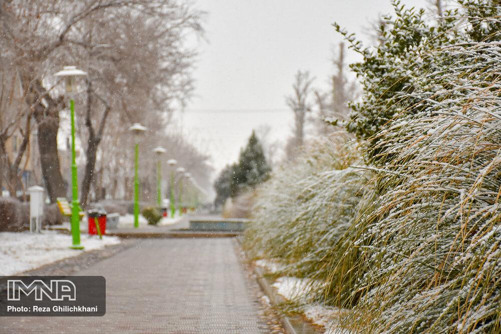 بارش برف در نجف آباد برف نوبرانه در نجف آباد+تصاویر برف نوبرانه در نجف آباد+تصاویر                                      2