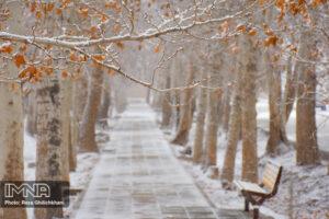 بارش برف کاهش بارندگی ها در نجف آباد + تصاویر بارش برف کاهش بارندگی ها در نجف آباد + تصاویر بارش برف                                      6 300x200