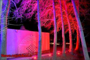 بیشه نجف آباد نور و رنگ در بیشه نجف آباد+تصاویر نور و رنگ در بیشه نجف آباد+تصاویر 1582193850 Q0eL5 300x200