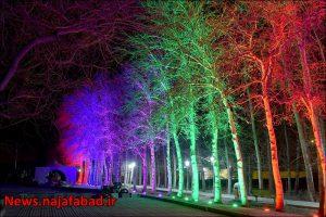 بیشه نجف آباد نور و رنگ در بیشه نجف آباد+تصاویر نور و رنگ در بیشه نجف آباد+تصاویر 1582193853 O4jP1 300x200