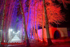 بیشه نجف آباد نور و رنگ در بیشه نجف آباد+تصاویر نور و رنگ در بیشه نجف آباد+تصاویر 1582193857 Q5iM9 300x200
