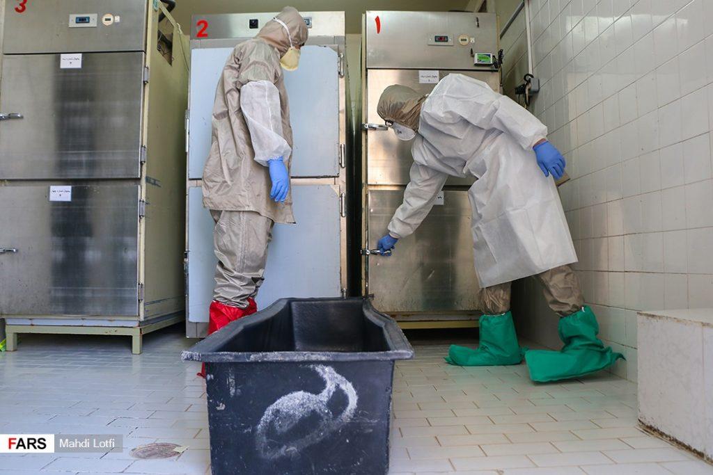 فوت تا تدفین بیمار کرونایی در نجف آباد از تخت تا قبر یک کرونایی در نجف آباد+تصاویر از تخت تا قبر یک کرونایی در نجف آباد+تصاویر                                                                       9 1024x683