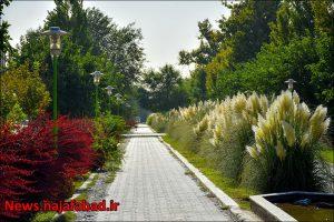 چهار باغ نجف آباد زیبایی های چهار باغ نجف آباد+تصاویر زیبایی های چهار باغ نجف آباد+تصاویر 1597723304 O8vI3 300x200