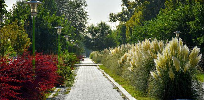 زیبایی های چهار باغ نجف آباد+تصاویر زیبایی های چهار باغ نجف آباد+تصاویر زیبایی های چهار باغ نجف آباد+تصاویر 1597723304 O8vI3 650x320