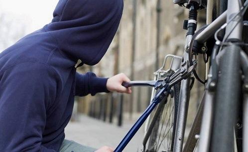 دستگیری سارق ۲۲ دوچرخه در نجف آباد دستگیری سارق ۲۲ دوچرخه در نجف آباد دستگیری سارق ۲۲ دوچرخه در نجف آباد